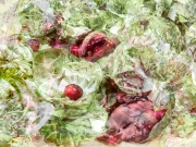Brussels Sprouts and Pomegranate Seeds