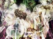 Eggplant and Garlic